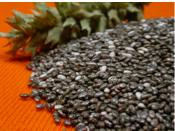 Omega 3 - Chia seeds