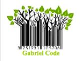 Gabriel Code Icon