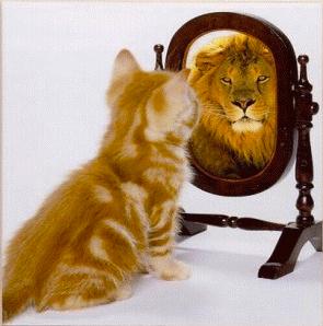 Kitty /Lion - Mirror of the Mind