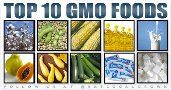 Top Gmo foods - Gabriel code - The Gabriel Method