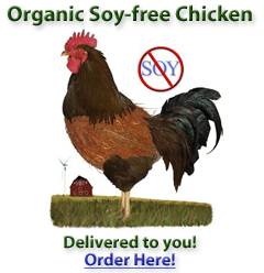 One study found salmonella in 39 percent of conventionally raised chickens, but only 5 percent of organic birds from the same farm.